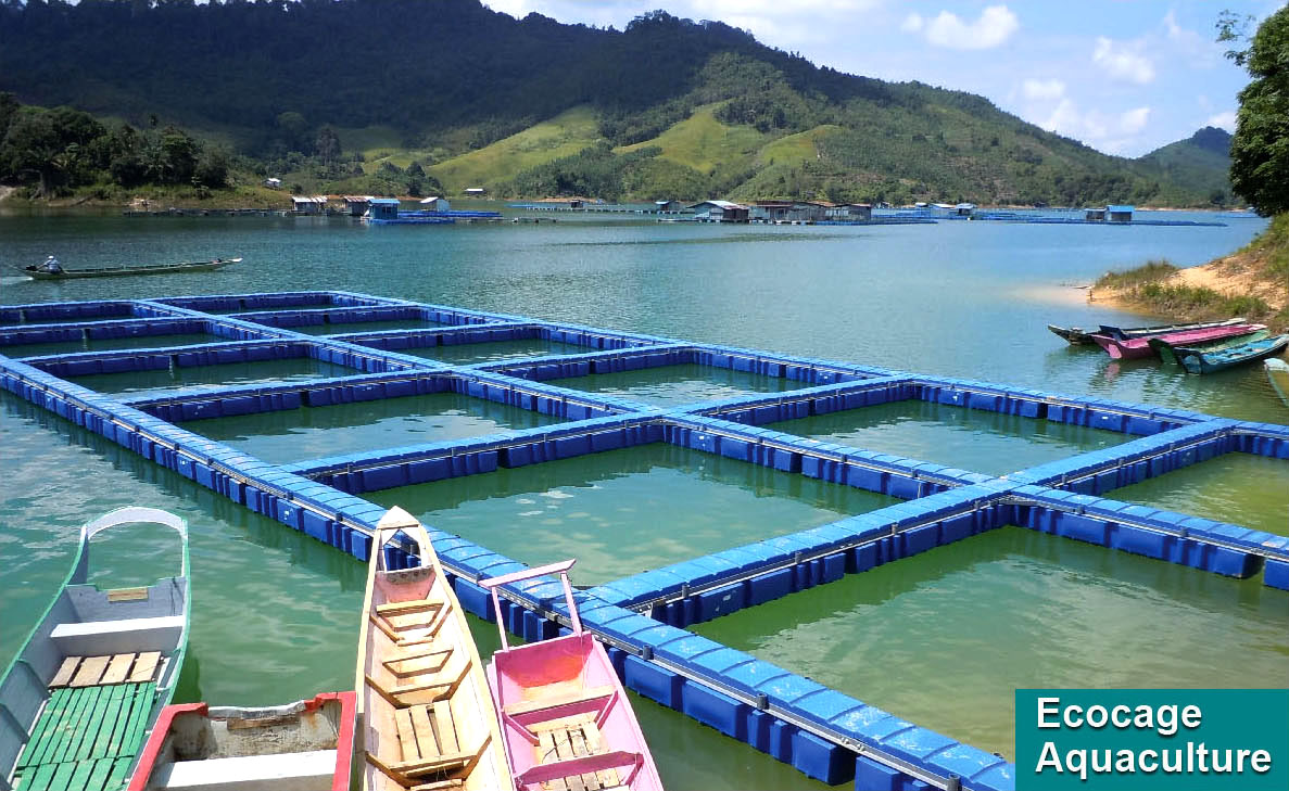 ECOCAGE Innovative Systems for Aquaculture